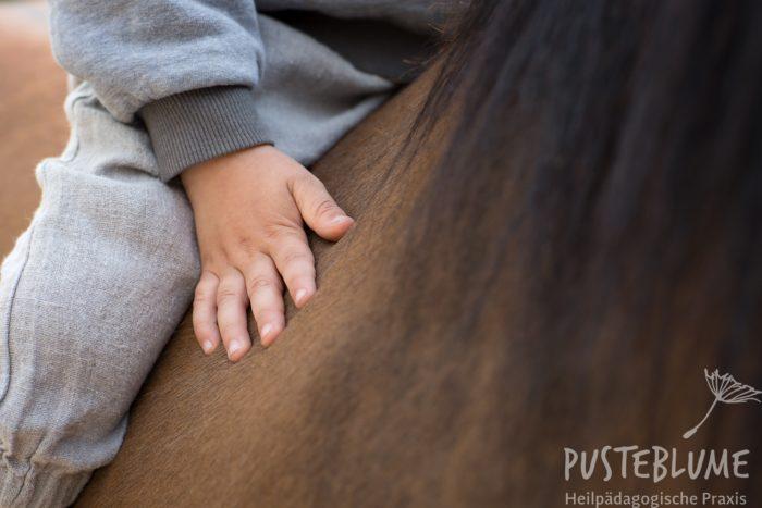 Kinderhand auf dem Pferderücken