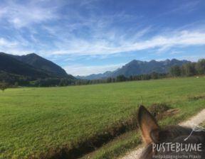 Blick auf Felder und Berge im Hintergrund